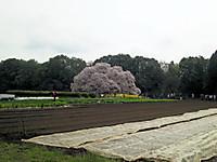 Dsc_0006_2
